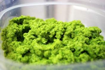 Broccoli-Puree
