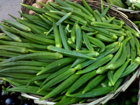 okra-bhindi-vegetable