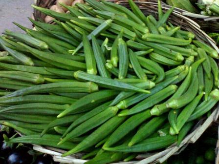 okra-bhindi-vegetable